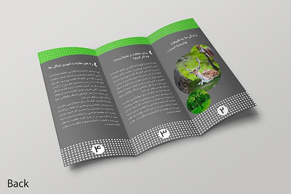 لایه باز بروشور انجمن حفاظت از محیط زیست